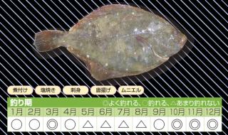 season_karei_02