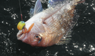 offshore_tackle_001